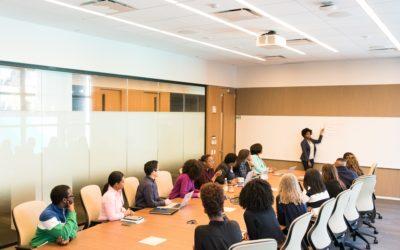 Back to Basics: Soft skills as a focus of EA programmes in the workplace
